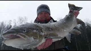 Экстримальная рыбалка. Лосось , фильм третий.