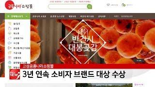 공룡나라쇼핑몰, 3년 연속 소비자 브랜드 대상 수상