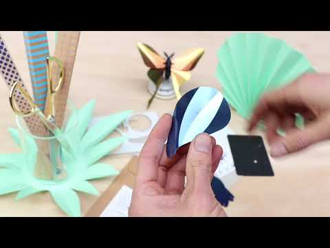 how to make the Paper Night Butterfly Moth 3D Insect puzzle by Assembli