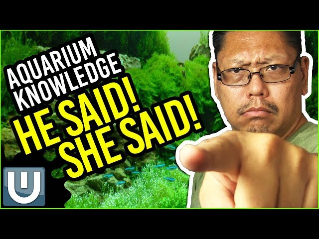 Aquarium Knowledge - Who is Right? Who is Wrong?   Waterlog 011