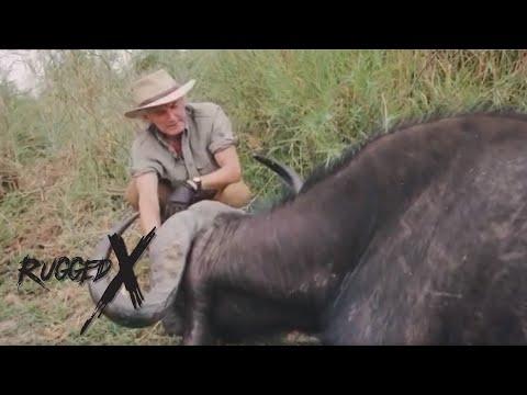 Tree Top Stalk of Cape Buffalo with J Alain Smith