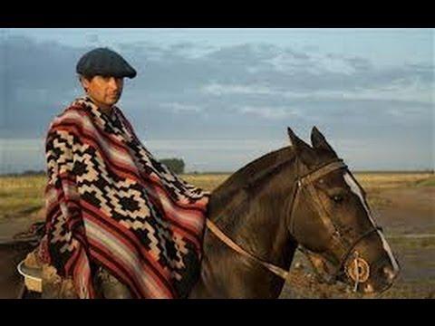 Fotos de caballos criollos en argentina