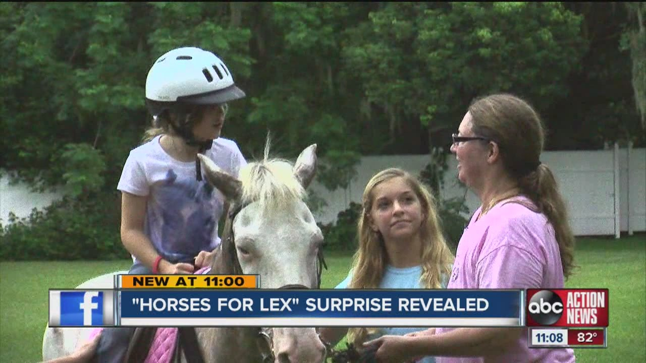 Horses for Lex: 7-year-old girl with cerebral palsy gets a big surprise