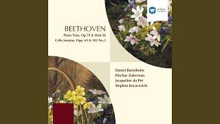 Piano Trio in E Flat Major, WoO 38 (2001 Remastered Version) : II. Scherzo (Allegro ma non...