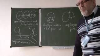 5.11.13 Физиология животных -Сергеев И.Ю. часть 1