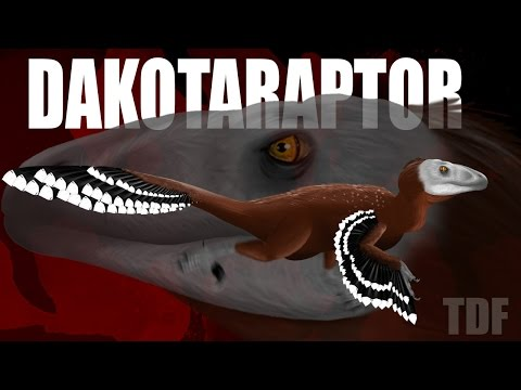 Dakotaraptor American Bandit (TDF Facts)