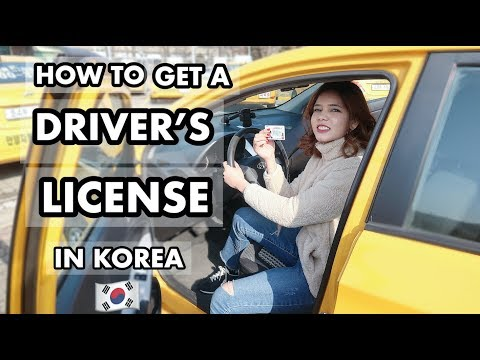 How To Get A Driver's License In Korea🇰🇷