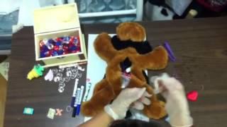 teddy has an operation Parody