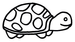 turtle easy draw drawings very rainbow painting