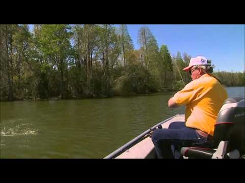 Fishing tip dance n 39 lessons during the pre spawn pt 2 for Bill dance fishing app