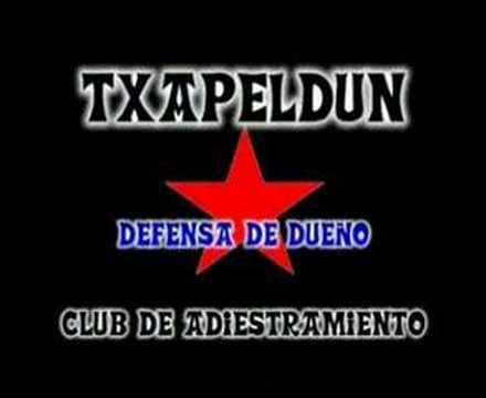 Txapeldun Club de Adiestramiento - Viana