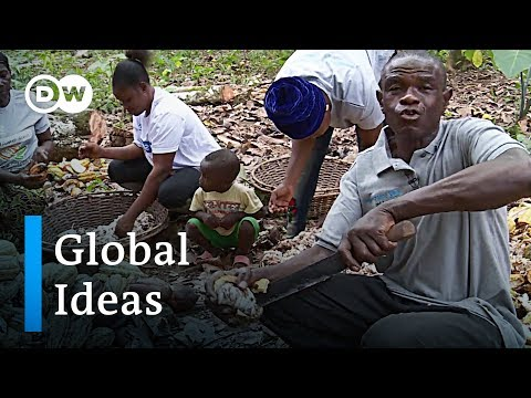 The struggle of Ghanas cocoa farmers | Global Ideas