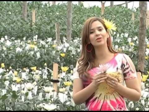 C mo cultivar crisantemo tipo exportaci n tvagro por juan - Como cultivar crisantemos ...