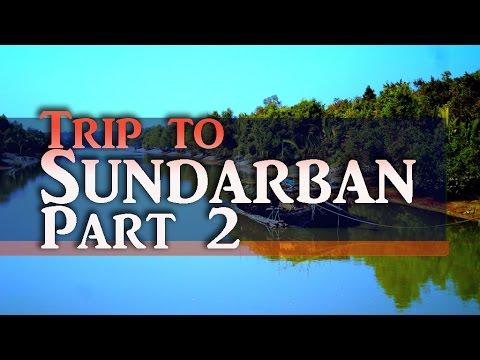 Inside Sundarban, Dudhmukhi canal, Boat tour. P2