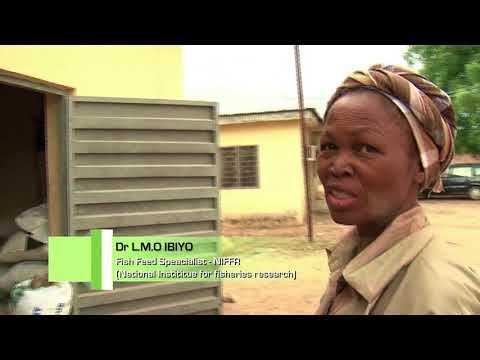 NIGERIA   FISH FEED TECHNOLOGY