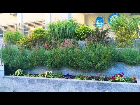 Garden Design with 4 levels Creative Ideas 2019   Flower Decoration #2