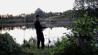 Рыбалка на Сома, донкой с берега 2019. Catfish. Vlog 3.