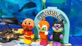 アンパンマンおもちゃアニメ❤スプラッシュ水族館で遊ぼう!の巻 Toy Kids トイキッズ animation anpanman