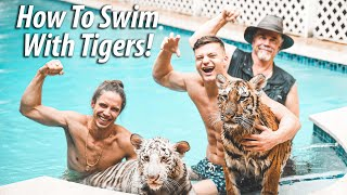 How to Swim with TIGERS with Cringe Fam  Myrtle Beach Safari