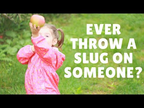 Ever Throw a Slug on Someone?