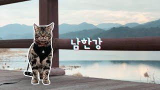 뱅갈고양이와 여행 | 운치 있는 남한강으로 고양이와 산…