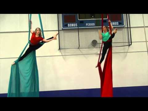 Rose - 12-Year-Old Billie Eilish Performing Aerial Silks To P!nk is Totally Badass