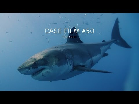 Capturing the Networked Society - Case 50 Ocearch