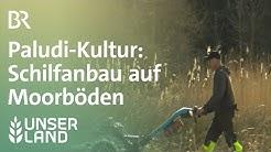 Paludi-Kultur: Schilfanbau auf Moorböden | Unser Land | BR Fernsehen