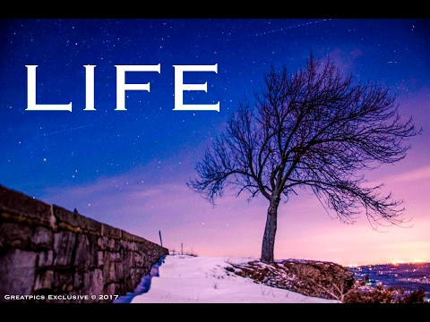 """""""Life"""" - A Progressive Time Lapse [Summer to Winter, Day to Night]"""