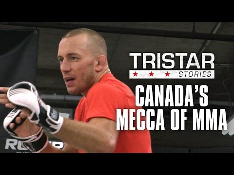 Tristar Gym: Canada's Mecca of MMA   Tristar Stories in 4K