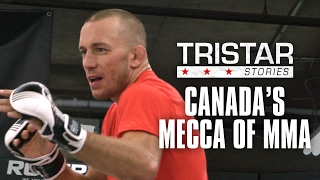 Tristar Gym: Canada's Mecca of MMA | Tristar Stories in 4K