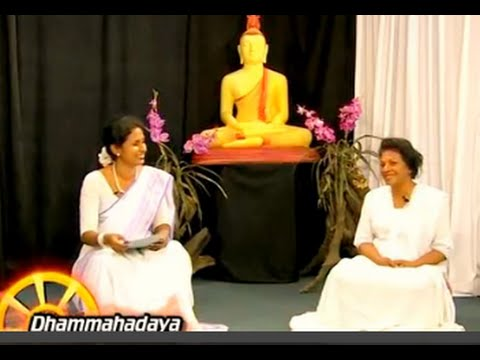 Dhamma Discussion 2 - Your Questions on meditation