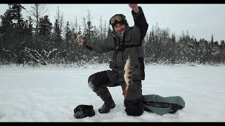 Такая рыбалка бывает только в декабре.главное добраться туда раньше всех .это кайф ловить такую рыбу