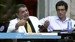 Diputado Olmedo Alfredo Horacio - Sesión - 18-12-2017 - PL