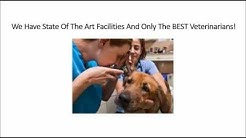 "24 <span id=""hour-emergency-vet"">hour emergency vet</span>erinarian In Jacksonville FL Call (904) 201-9922 