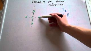 Polarity of Bonds and Molecules
