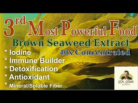 Third Most Powerful Food on Earth.  Kelp Extract