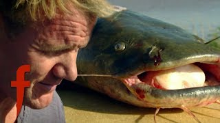 Gordon Ramsay Learns How To Catch Catfish
