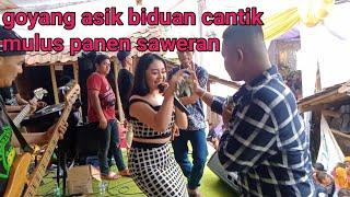 Belah Duren || Sinta Cahya|| Radjata Entertaiment Live Dangdut