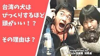 チャンネル登録よろしくワンッ!! http://www.youtube.com/channel/UCF...