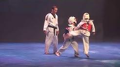 2019 02 17 Taekwondo club Vélizy du 13ème Festival des Arts Martiaux