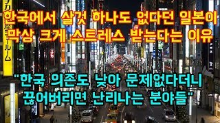 """한국에서 살것 하나도 없다던 일본이 막상 크게 스트레스 받는다는 이유  """"한국 의존도 낮아 문제없다더니 끊어버리면 난리나는 분야들"""""""