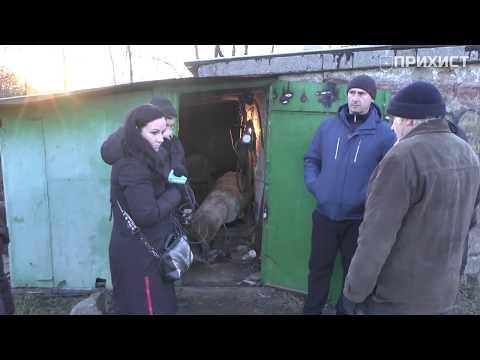 Будет ли в Приднепровском техническая вода?