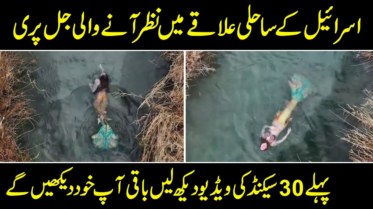 Download Real Mermaid Sightings - Jalpari In Real - Purisrar Dunya - BR Official