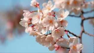 Весенний вальс
