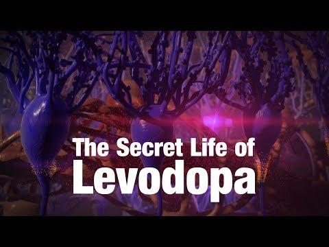 The Secret Life of Levodopa