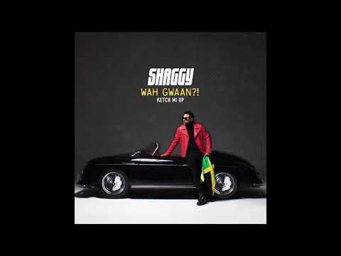 Shaggy - Ketch Mi Up (Official Audio)