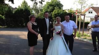 Свадьба Сергей &  Елена Urich