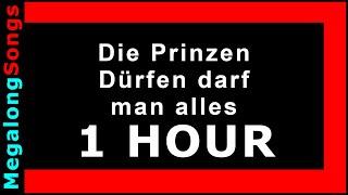Die Prinzen - Dürfen darf man alles [1 HOUR]