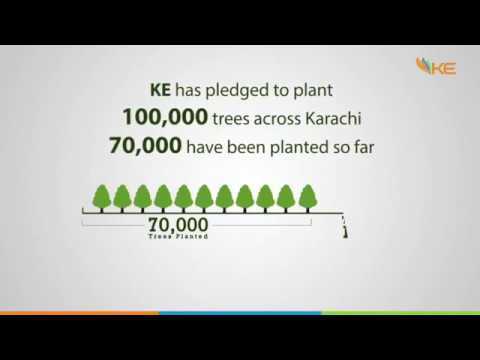 K-Electric: Plant For Pakistan in partnership with SZABIST